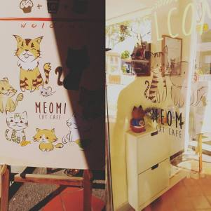 Cat cafe! Definitely want to go here when we are missing our cat, Hardy