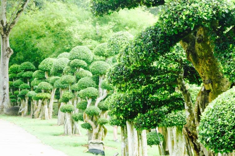 Topiary Perdana Botanical Garden